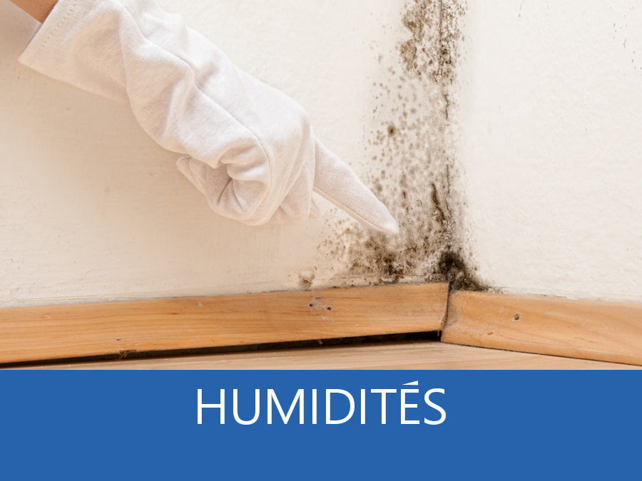 expertise humidité 27, expert humidité Eure, cause moisissure Evreux, solutions humidité Vernon,